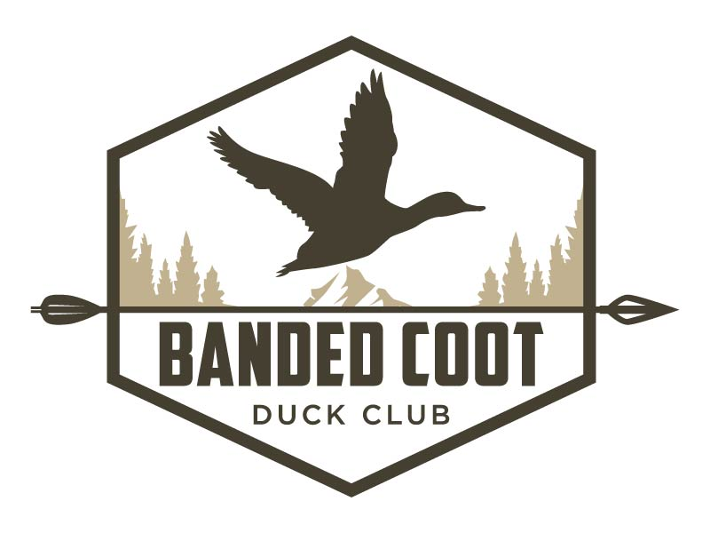 Banded Coot Duck Club logo design by Mirza