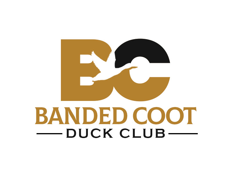 Banded Coot Duck Club logo design by kunejo