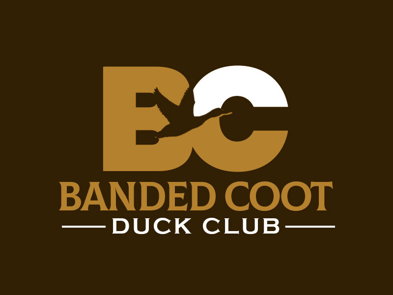 Banded Coot Duck Club Logo Design