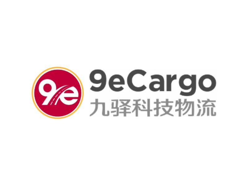 9e Cargo Logo Design